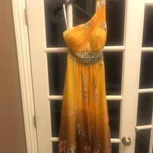 Evening Gown / Prom Dress